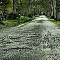 Route du bois orcan en piteux état...