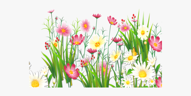 22_228504_spring_clipart_shopping_grass_and_flowers_png