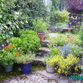 Photos de jardin