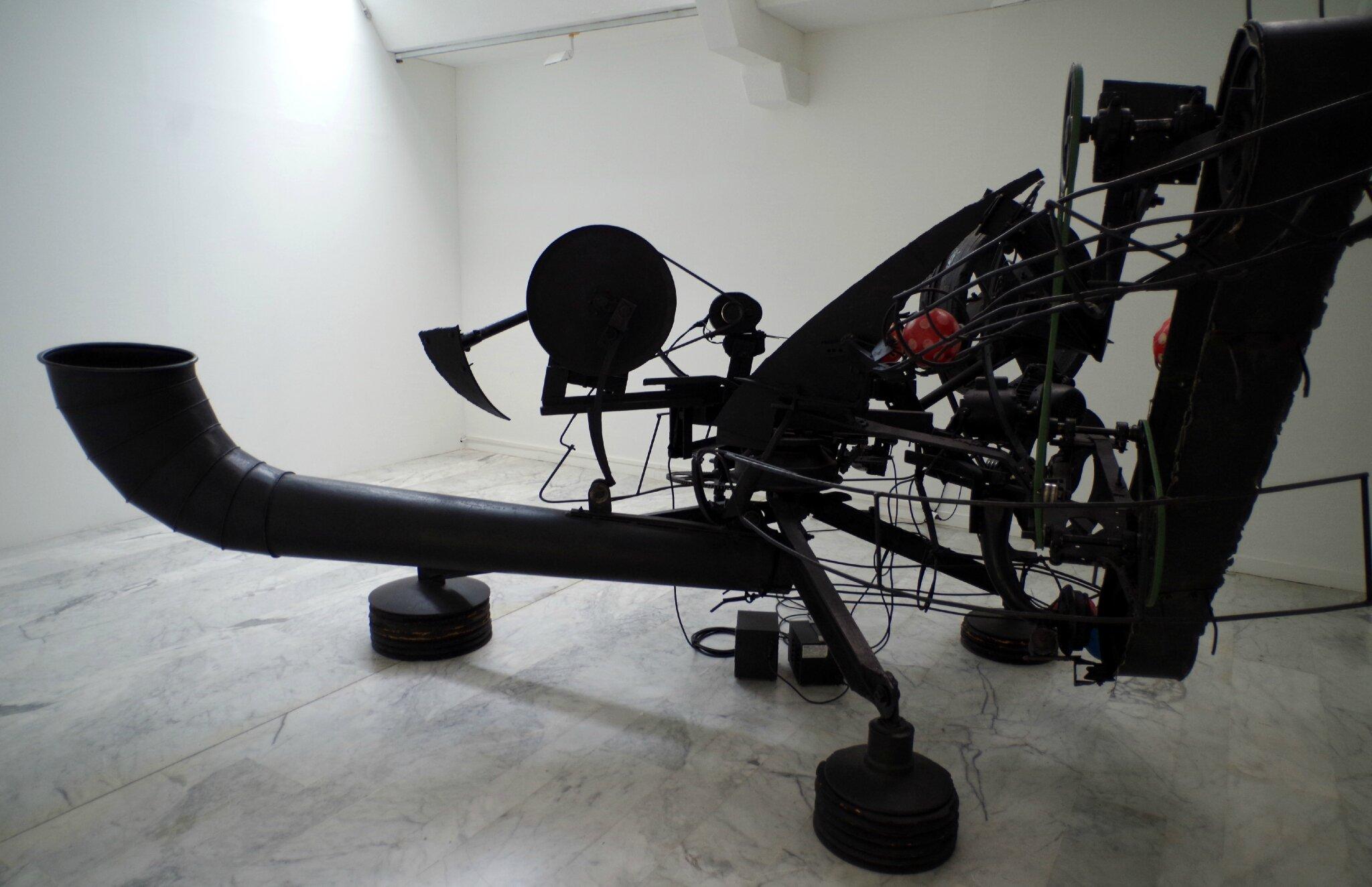 IMGP2828