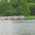Hyde Park (5)