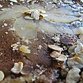 Gâteau de crêpes: pomme, crème d'amandes, sirop d'érable
