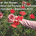 France 3 occitanie: nouvelle chronique avec votre naturopathe