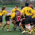 36IMG_1420T