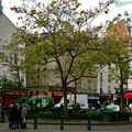 Pittoresque place de la Contrescarpe.