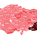 2008 Electricity Theft Percentages in Turkey