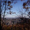 Mont royal 21oct 048