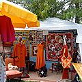 1-La fête des Centres Sociaux 2009