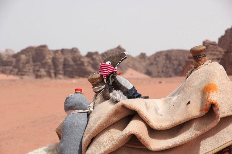 Sieste dans le Wadi Rum