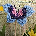 papillon Hélène 03