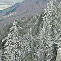 Ski de rando nordique vercors - crobache d'herbounouse (col de carri)