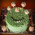 Gâteau extra-terrestre