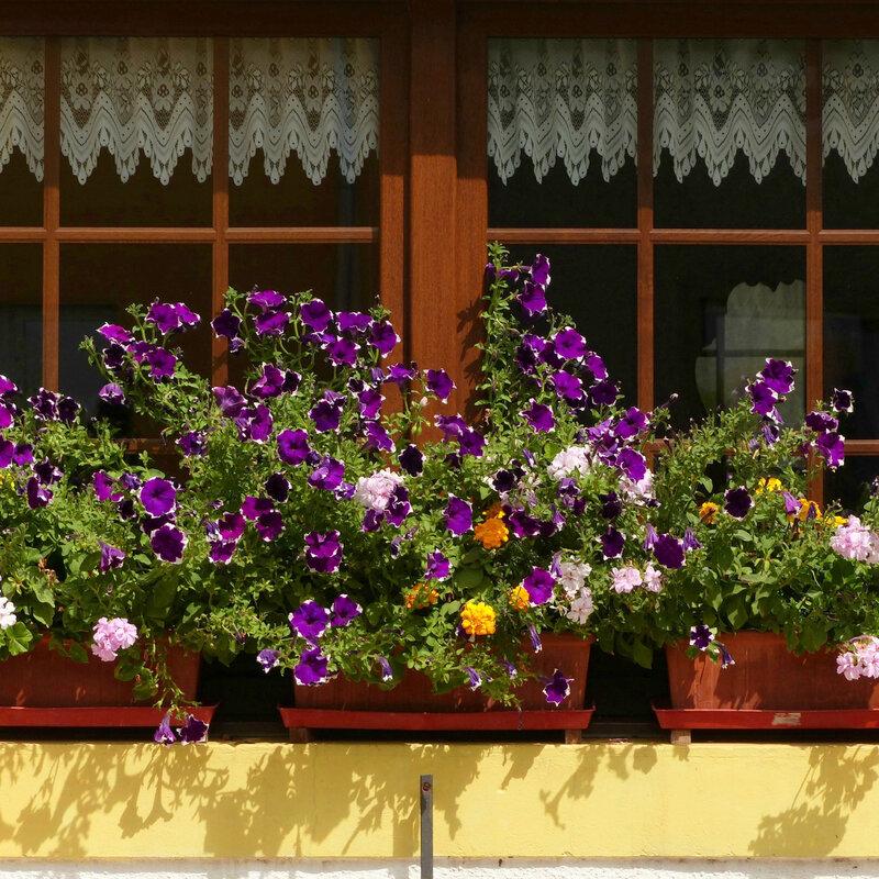 aaaaaa vasques et jardinières10