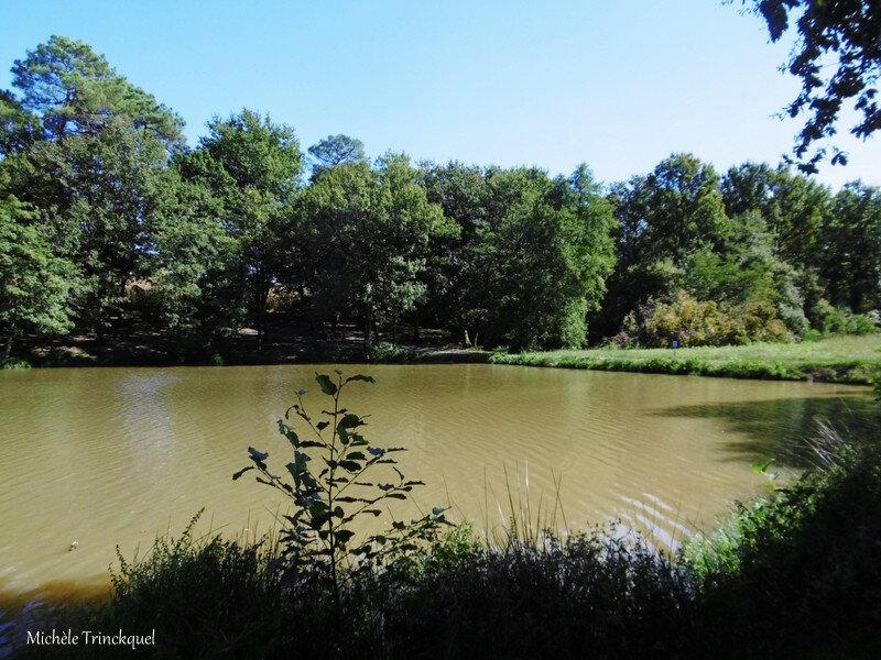 Lac de Luc et moi 021018