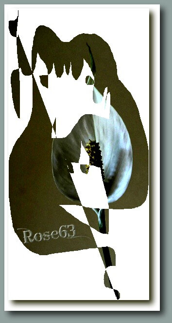 JesuisenpauseRose63