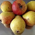 Été 14 - fruits de saison