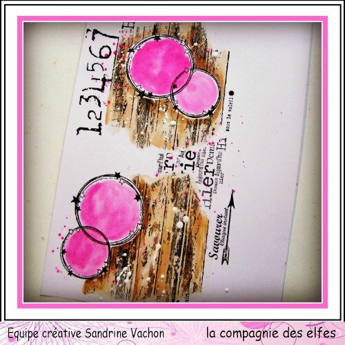 Page Sandrine VACHON dt LCDE avril (6)
