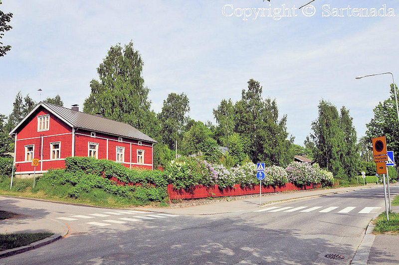 Balade d'été à Mikkeli_Finlande_ (10)
