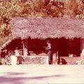 Pokhara 78