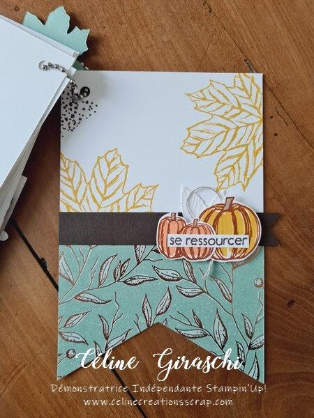 Album drapeau Balade d'automne -9