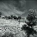 Christoph erb & frantz loriot - sceneries
