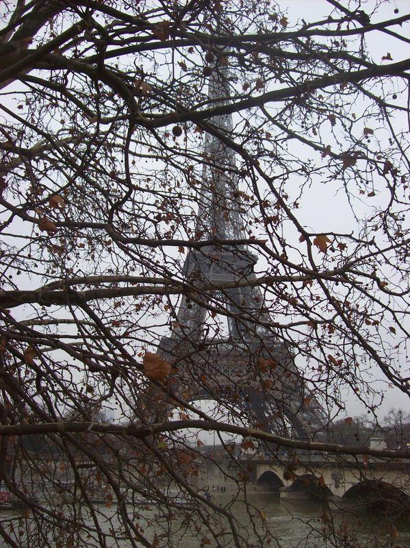 La belle Parisienne