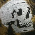 SUN 7, Silverskull,, 2010. Technique mixte sur toile 200 x 200 cm.photo Eve