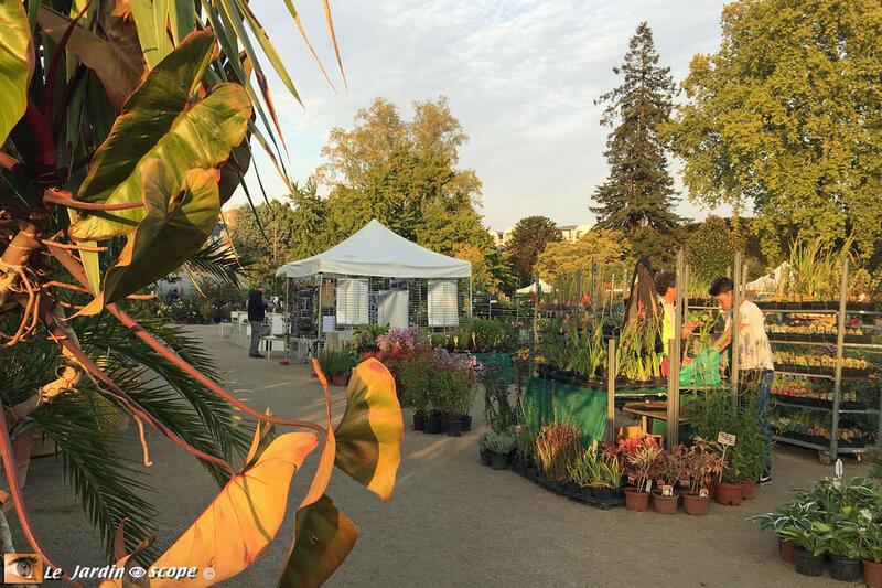 O-Jardin-des-plantes-5