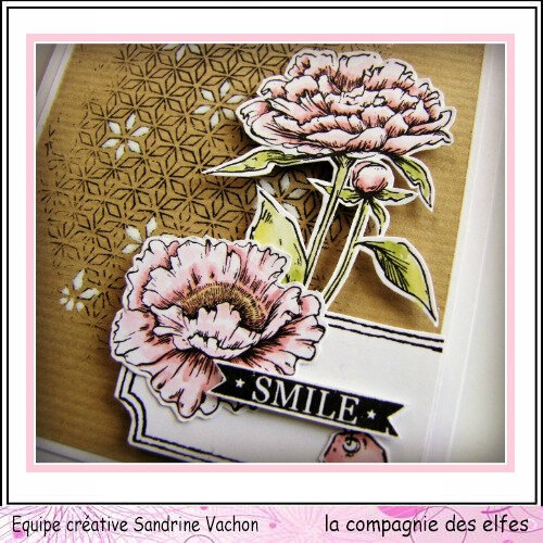 CARTE SMILE dt LCDE (2) - Copie