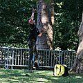 IMG_0728a Lancer de sac