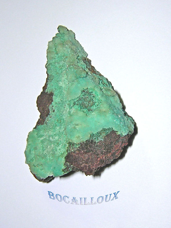 CHRYSOCOLLE 255