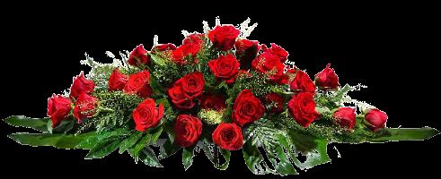 Coussin de roses rouges