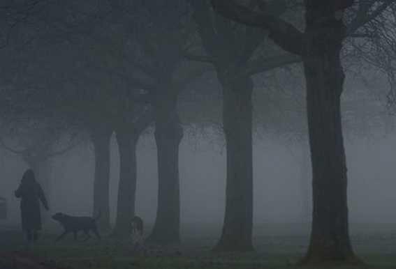 alamyphoto-brouillard