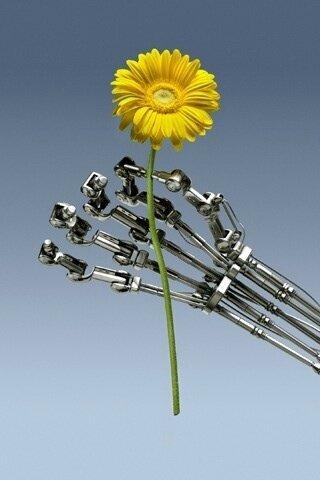fleur réelle main artificielle