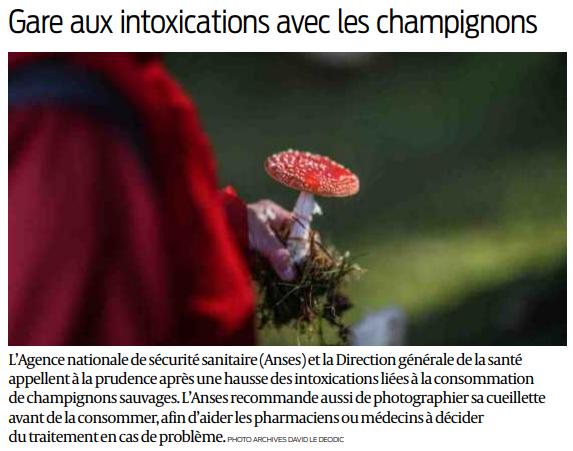 2018 11 12 intoxication aux champignons