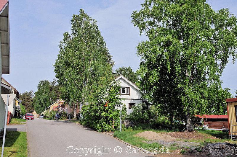 Balade d'été à Mikkeli_Finlande_ (19)