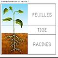 Windows-Live-Writer/Projet-TOUS-AU-JARDIN-_F95C/image_thumb_7