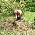 Un peu de jardinerie