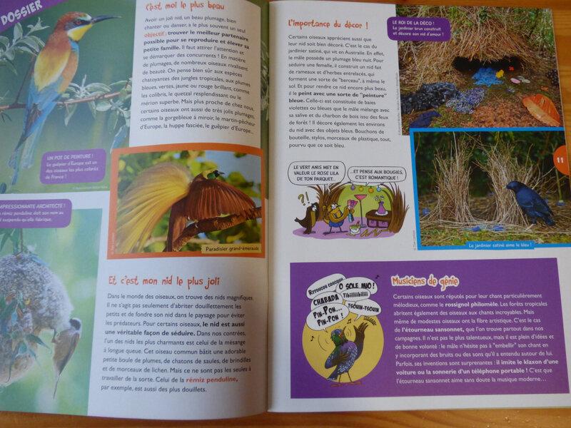 Oiseau Mag Jr Hiver 19 (2)