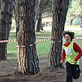 cross district 2013 (25)
