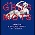 Les gros mots - abécédaire joyeusement moderne du féminisme - clarence edgard rosa - editions hugo & cie