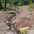 Ruisseau de Jouvence