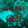 Ste-Maxime sept 09
