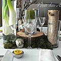 Nuit des anges décoratrice de mariage décoration de table jardin nature 003