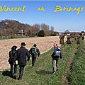 Vincent van gogh au borinage 2020 : promenades guidées / guided walks / geleide wandelingen