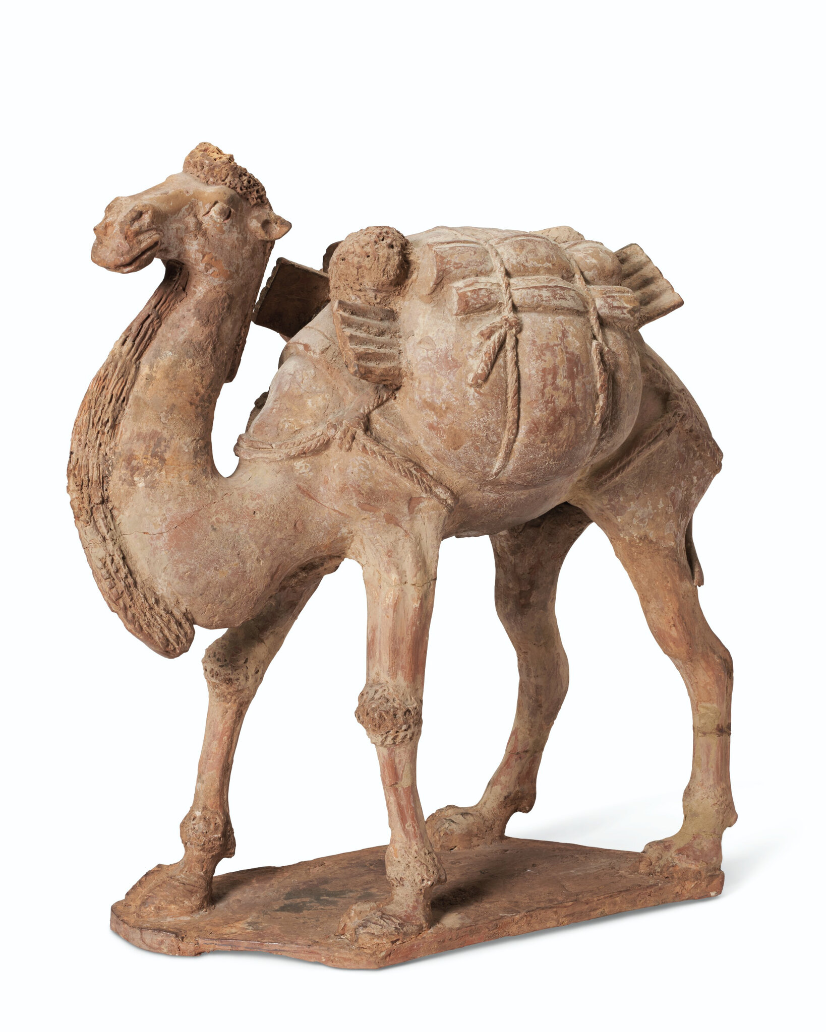 A painted pottery figure of a striding Bactrian camel, Tang dynasty (AD 618-907)