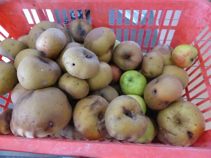 3-pommes, vinaigre de pommes (2)