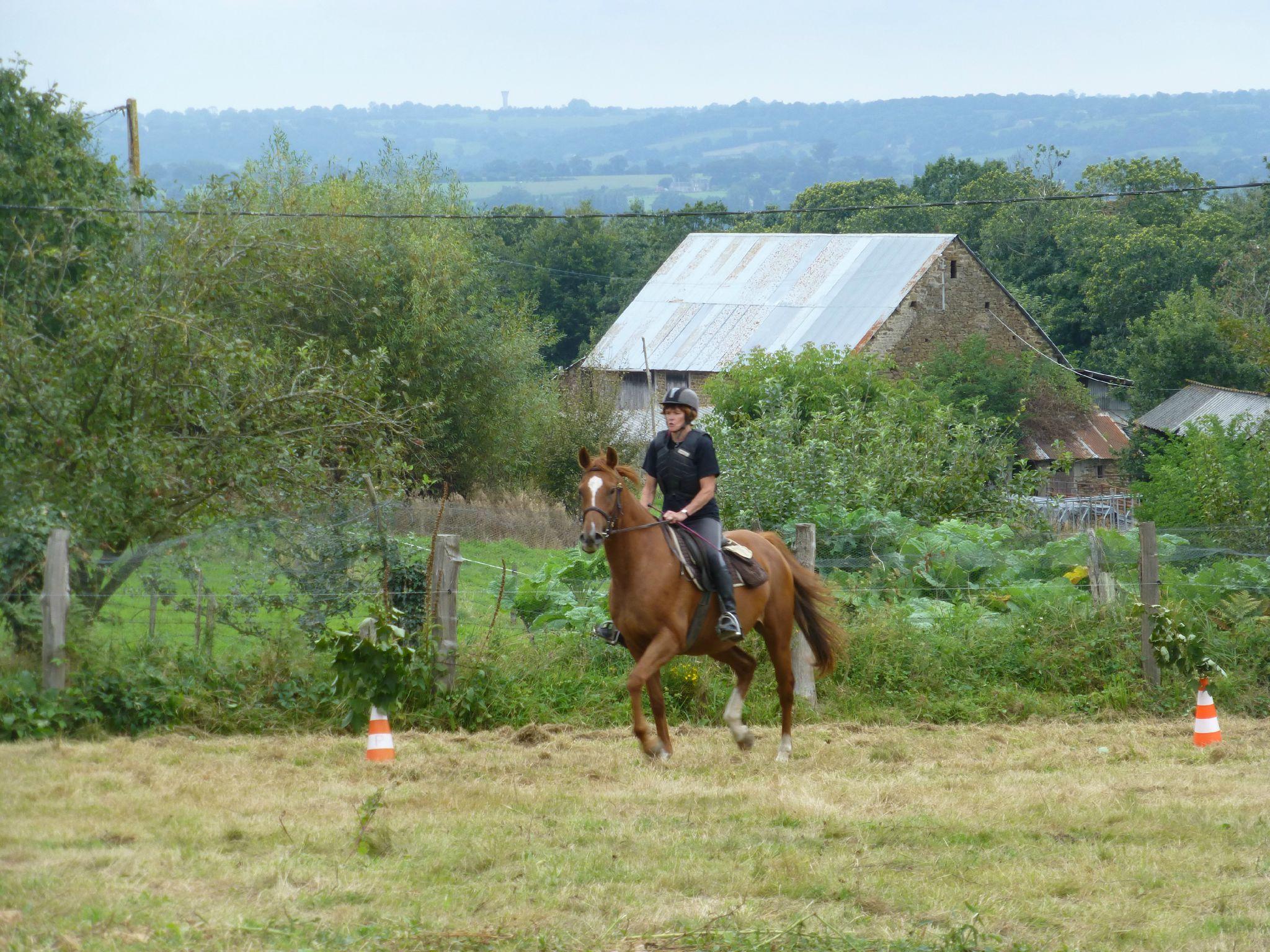 Jeux équestres manchots - parcours de pleine nature après-midi (269)