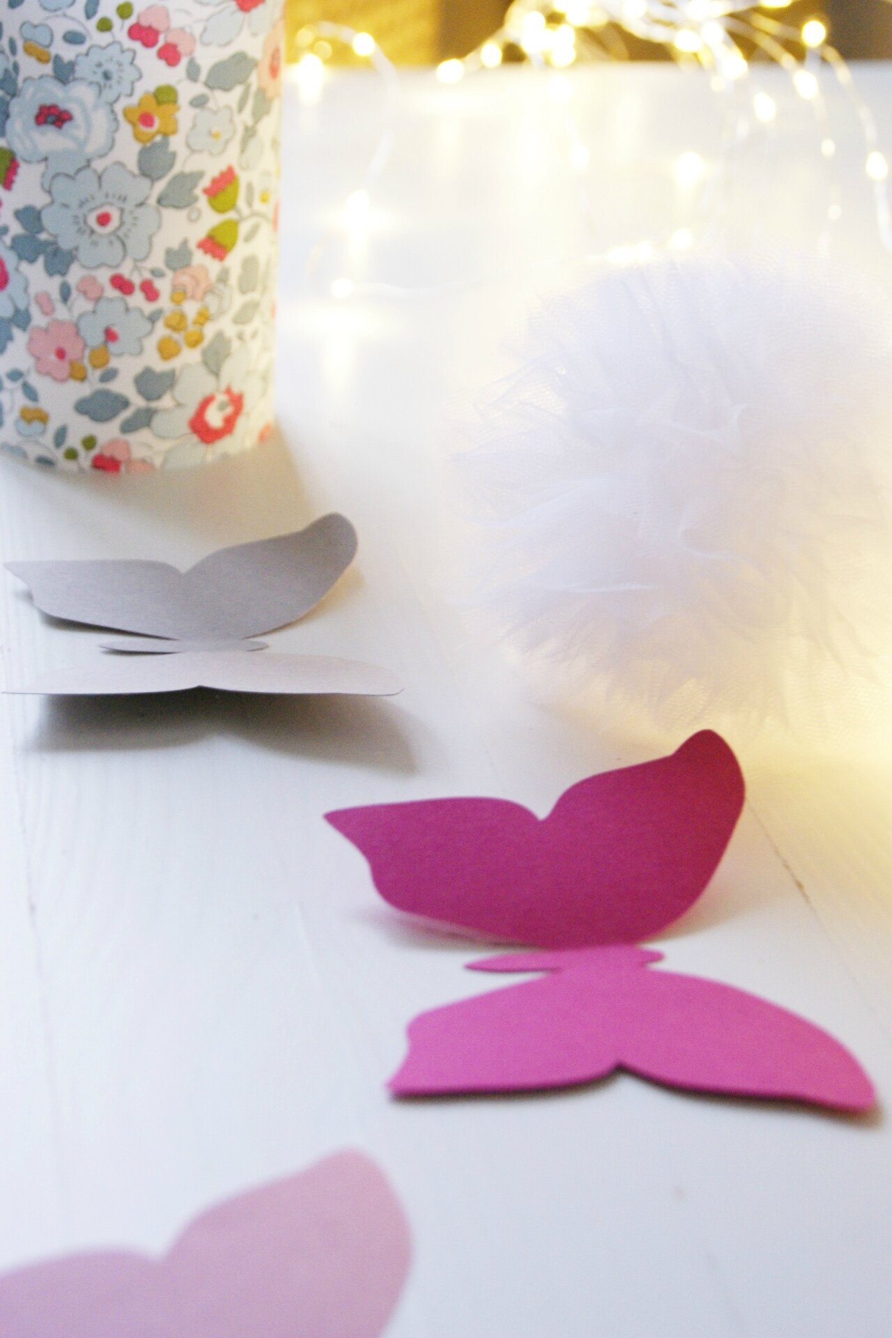 papillons-
