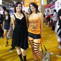 Miss Tigre et Miss Chat